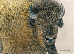 "Judy Larson Handsigned and Numbered Limited Edition Canvas Giclee:""Slow Bull"""