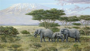 """Ron Van Gilder Limited Edition Canvas Giclee:""""Heart of Africa - Elephants"""""""