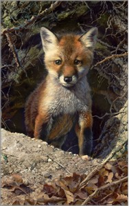 "Carl Brenders Hand Signed and Numbered Limited Edition Fine Art Print:""Just Shy of Sly"""