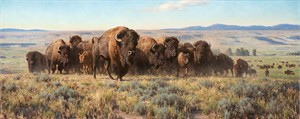 "Tucker Smith Limited Edition MasterworkEdition™ Canvas Giclée:""Return to the Prairie"""