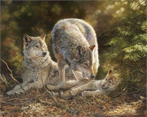 """Bonnie Marris Hand Signed Limited Edition Canvas Giclee:""""Trouble- Wolves"""""""