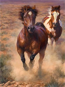 """Bonnie Marris Hand-Signed and Numbered Limited Edition Giclee Canvas:"""" Into the Great Wide Open"""""""