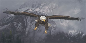 "Daniel Smith Artist Hand-Signed Limited Edition Giclee Canvas:""American Icon - Bald Eagle"""
