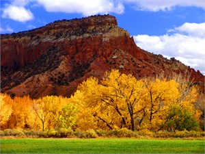 "Gerald Brimacombe Handsigned and Numbered Limited Edition Giclee on Paper:""New Mexico - Ghost Ranch Autumn LR"""