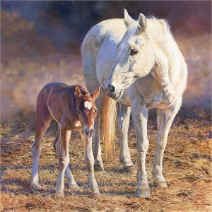 """Bonnie Marris Hand-Signed and Numbered Limited Edition Giclee Canvas:""""First Impressions"""""""