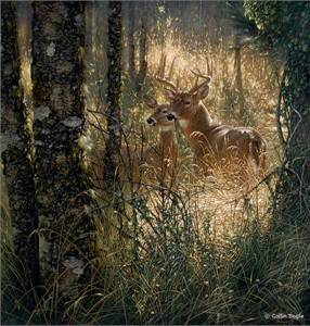 "Collin Bogle Handsigned and Numbered Limited Edition :""A Golden Moment"""