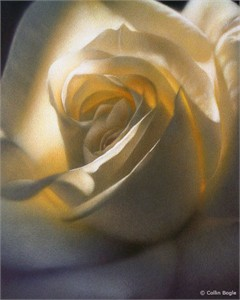 """Collin Bogle Handsigned and Numbered Limited Edition :""""Inner Glow"""""""