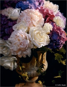 """Collin Bogle Handsigned and Numbered Limited Edition :""""Rhapsody in Bloom"""""""