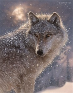 "Collin Bogle Handsigned and Numbered Limited Edition Print and Canvas:""Lone Wolf"""