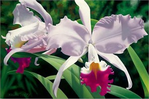 "Brian Davis Hand Signed and Number Limited Edition Giclee on Canvas: ""White and Magenta Orchids"""