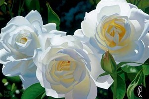 "Brian Davis Limited Anniversary Edition Giclee on Canvas :""Sunny Afternoon Roses"""