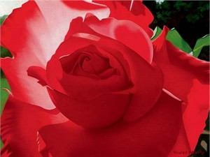 "Brian Davis Handsigned and Numbered Limited Edition Giclee on Canvas:""Brilliant Red Solo Rose"""