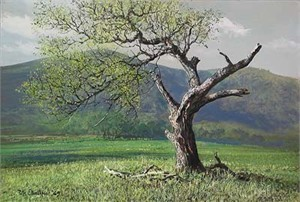 """Peter Ellenshaw Handsigned & Numbered Limited Edition Giclee on Canvas:""""Lone Oak"""""""