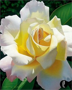 "Brian Davis Handsigned and Numbered Limited Edition Giclee on Canvas:""Love's Rose"""