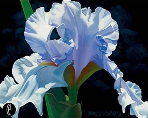 "Brian Davis Handsigned and Numbered Limited Edition Giclee on Canvas:""Sky Blue Lilac"""