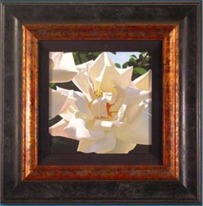 "Brian Davis Handsigned and Numbered Framed Limited Edition Giclee on Canvas:""Radiant Rose """