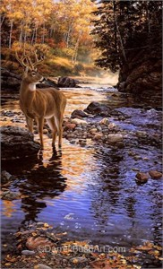 """Darrell Bush Hand Signed and Numbered Limited Edition Giclee:""""Shallow Crossing"""""""