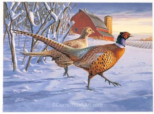 "Darrell Bush Hand Signed and Numbered Limited Edition Giclee:""Minnesota Pheasant Stamp Print"""