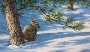 "Darrell Bush Hand Signed and Numbered Limited Edition Giclee:""Winters Canopy"""