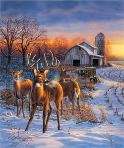 "Darrell Bush Hand Signed and Numbered Limited Edition Giclee:""Winter Whitetails"""