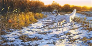 "Darrell Bush Hand Signed and Numbered Limited Edition Giclee:""A Setters Day"""