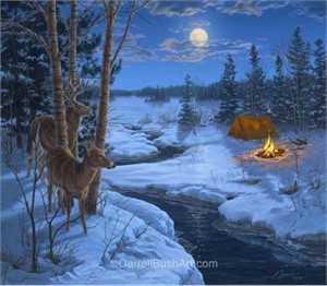 "Darrell Bush Hand Signed and Numbered Limited Edition Giclee:""Moonshadows"""