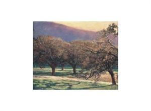 """Ken Elliott Signed and Numbered Limited Edition Giclée on Somerset Velvet Paper:""""Evening Oaks"""""""