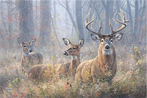 """Abraham Hunter Hand Signed and Numbered Limited Edition Embellished Canvas Giclee:""""Saved By Grace"""""""