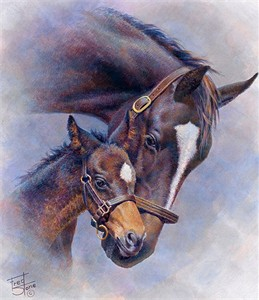 """Fred Stone Hand Signed and Numbered Limited Edition Canvas Giclee """"Born To Greatness - Zenyatta & Foal"""""""
