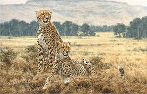 "Simon Combes Hand Numbered Limited Edition Anniversary Giclee on Canvas:""Cheetah Pair"""