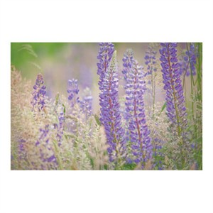 "Donald Paulson Signed and Numbered Limited Edition Custom Sized Gicl�e on Paper or Canvas: ""Lupine Grasses"""
