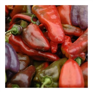 "Stacy Bass Signed and Numbered Limited Edition Custom Sized Gicl�e on Paper or Canvas: ""Hot Peppers"""