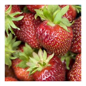 """Stacy Bass Signed and Numbered Limited Edition Custom Sized Gicl�e on Paper or Canvas: """"Strawberries"""""""