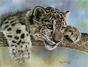 "Leslie Harrison Open Edition Print:""Intrigued"""