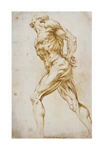 """Peter Paul Reubens Fine Art Open Edition Giclée:""""Anatomical Study: Nude Male"""""""