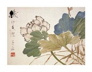 """Xu Gu Fine Art Open Edition Giclée:""""Lotus"""""""