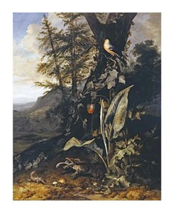 "Matthias Withoos Fine Art Open Edition Giclée:""Forest Floor with a Toad and a Lizard"""