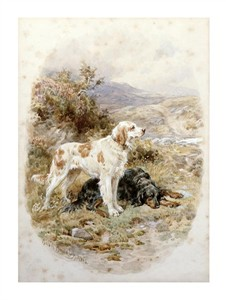 "Basil Bradley Fine Art Open Edition Giclée:""An English and a Gordon Setter"""