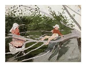 """Winslow Homer Fine Art Open Edition Giclée:""""Out on a Limb"""""""