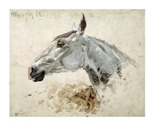 """Henri Toulouse-Lautrec Fine Art Open Edition Giclée:""""Testo Di Cavallo"""""""