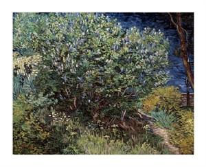 """Vincent Van Gogh Fine Art Open Edition Giclée:""""Lilacs"""""""