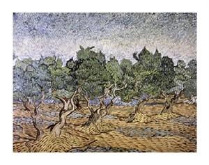 "Vincent Van Gogh Fine Art Open Edition Giclée:""Olive Orchard, Violet Soil"""
