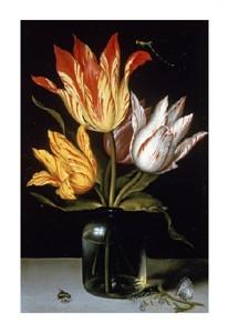 "Ambrosius Bosschaert Fine Art Open Edition Giclée:""Tulips in a Glass Vase"""
