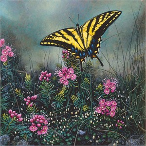 "Stephen Lyman Hand Numbered Limited Edition Giclee on Canvas:""Swallowtail Butterfly and Pink Mountain Heather"""