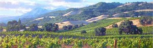 """June Carey Handsigned and Numbered Limited Edition Giclee on Canvas:""""Song of the Wine Country"""""""