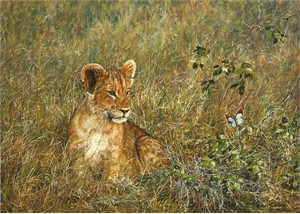 "Simon Combes Hand Numbered Limited Edition Giclée Canvas:""Lion Cub and the Butterfly"""