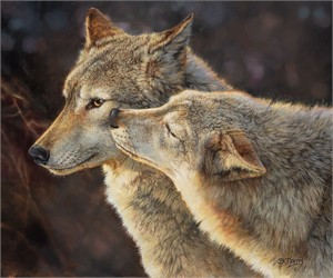 """Bonnie Marris Handsigned and Numbered Limited Edition Giclée Canvas:""""Wolf Kiss"""""""