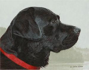"""John Weiss Open Edition Fine Art Canvas Giclée:""""  The Fogs Risin'"""""""
