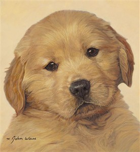 "John Weiss Open Edition Fine Art Canvas Giclée:""Last of the Litter"""