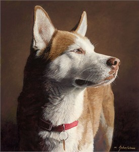 "John Weiss Open Edition Fine Art Canvas Giclée:""Husky"""